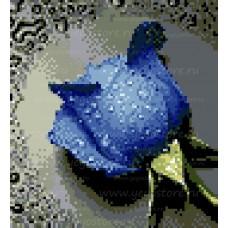 Алмазная мозаика EE-D0484