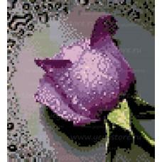 Алмазная мозаика EE-D0485